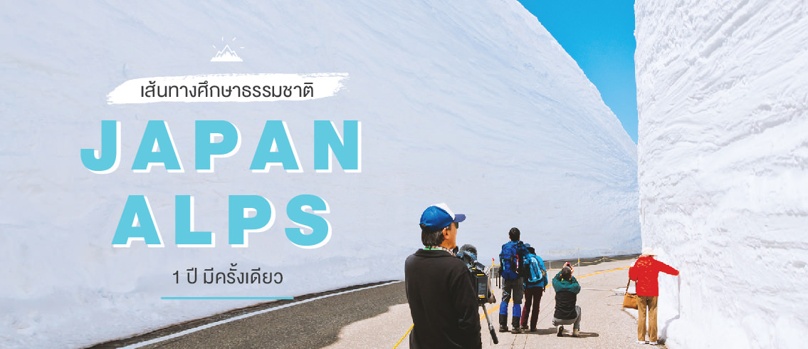 บทความ JAPAN ALPS มันก็จะสวยแบบแอลป์ๆ หน่อย