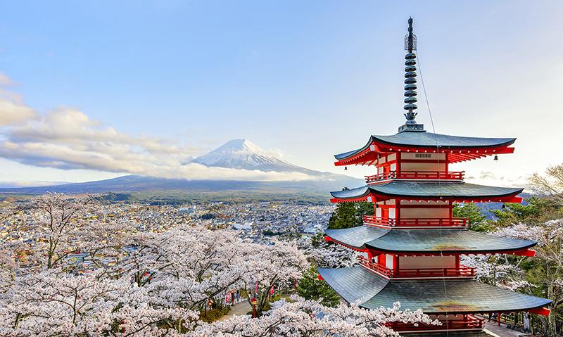 33 Chureito Sakura